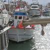 El sector pesquero andaluz pendiente de la reunión de la Unión Europea y Marruecos para negociar por tercera vez el acuerdo pesquero