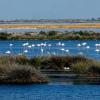 Organizaciones ecologistas se movilizan en defensa de los parques nacionales