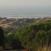 Punta Umbría organiza la XI Semana de Repoblación Forestal en el Paraje Natural de Enebrales dirigido a alumnos y alumnas de 4º de primaria con el objetivo concienciar de la importancia del patrimonio forestal