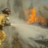 Se destinan 622.832€ a proyectos para la ejecución de actuaciones preventivas contra incendios forestales y lucha contra el cambio climático en el entorno de los montes de Benalúa entre otras zonas
