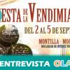 Montilla celebra el final de la recogida de la uva con la Fiesta de la Vendimia, casi un mes de actividades que homenajean los vinos de la DOP Montilla-Moriles
