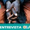 La Asociación Pro Derechos Humanos de Andalucía denuncia que el Ministerio del Interior obvia los derechos humanos en su balance sobre migración del año 2015