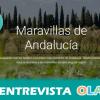 La iniciativa 'Maravillas de Andalucía' acerca la riqueza patrimonial de nuestra comunidad de manera digital, con imágenes y tours virtuales de gran calidad