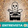 Greenpeace vuelve a salir a la calle para denunciar las prácticas de la multinacional Monsanto que atentan contra la agricultura tradicional, el medio ambiente y la salud