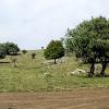 Los caminos rurales de Rute serán rehabilitados con el objetivo de prevenir incendios forestales