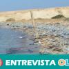 Greenpeace denuncia las graves consecuencias medioambientales y alimentarias de los plásticos que llegan al mar