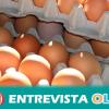 La Confederación de Consumidores y Usuarios envía un mensaje de tranquilidad ante la alerta sanitaria de los huevos contaminados de Europa central