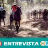 Hinojos acoge a cientos de equinos semisalvajes de Doñana en su tradicional 'Recogida de Yeguas'
