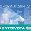Ocio, cultura y tradición se unen esta semana en Huéscar con la XVIII Feria Agroganadera centrada en el cordero segureño