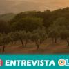 El Observatorio de Soberanía Alimentaria asegura que las grandes superficies crean el espejismo de gran diversidad de productos