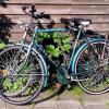 Un instituto de Ogíjares fomenta el uso de la bicicleta y hábitos saludables participando en el Proyecto Stars