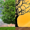 Intercambiar experiencias y políticas ambientales es el objetivo de las Jornadas sobre Cambio Climático de Granada