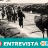 Se cumplen 81 años de 'la desbandá', el peor y, sin embargo, menos conocido ataque franquista que dejó en torno a 10.000 personas asesinadas en la carretera de Málaga a Almería