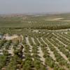 La Sierra Sur de Sevilla sigue sin poder gestionar el dinero europeo al Desarrollo Rural