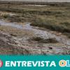 Greenpeace y Mesa de la Ría denuncian vertidos de fosfoyesos a la ría de Huelva tras las irregularidades que han quedado al descubierto con el temporal