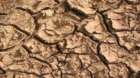 Andalucía es la comunidad española más amenazada por la desertificación