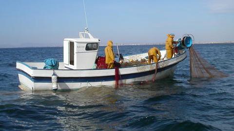 OCEANA pide la creación de áreas marinas protegidas y más control sobre la pesca para garantizar la sostenibilidad de los caladeros