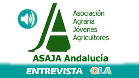 Vicente Pérez (Asaja Andalucía) «El campo necesita inversiones reales, si no, seguiremos inmersos en esta crisis profunda del sector primario»