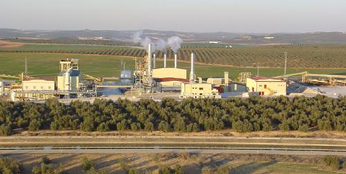 La Central de Biomasa de la localidad cordobesa de Puente Genil se convierte en referente internacional en tecnología de generación de electricidad alternativa
