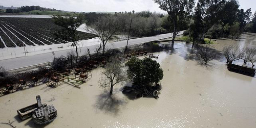 Jerez, la Junta, Asaja y COAG anuncian una reunión de trabajo conjunta para analizar los daños generados por la crecida del río Guadalete