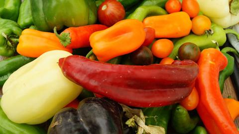 ASAJA-Almería denuncia que el aumento del precio de las hortalizas está provocando que se estanque su consumo