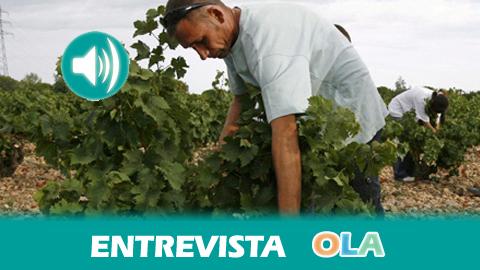 «Hay que crear una cultura del trabajo agrario para que esté mejor visto de lo que está actualmente en Andalucía». Pedro Marcos, secretario general FITAG en UGT-A