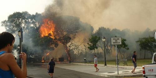 Efectivos del INFOCA logran controlar un incendio forestal en un paraje de la localidad gaditana de San Roque