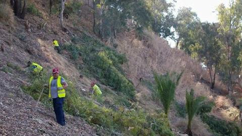 El municipio gaditano de Arcos de la Frontera llevará a cabo mejoras en las zonas verdes del término municipal