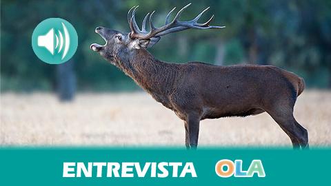 «La temática principal es la berrea del ciervo pero, a parte, vamos a complementarlo con actividades y comidas para disfrutar de los manjares de la Sierra de Cádiz», Juan de los Ríos, Complejo Rural Tajo del Águila