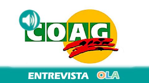 «Los presupuestos andaluces no dan el apoyo suficiente a la agricultura como sector productivo», Ignacio Barrero, coordinador de los servicios técnicos de COAG-A