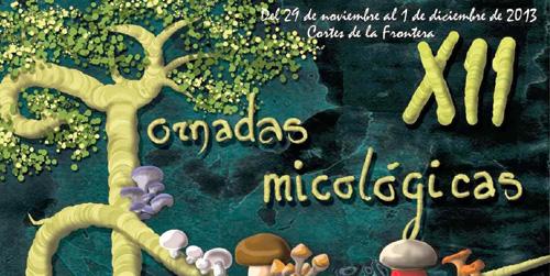 Benalup-Casas Viejas celebrará las III Jornadas Micológicas en el Puente de la Constitución