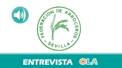 «El dragado del río Guadalquivir puede provocar graves consecuencias en los cultivos de arroz», Manuel Cano, director gerente de la Federación de Arroceros