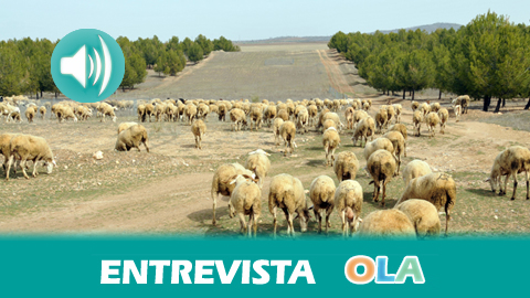 «Un acto tan antiguo como sacar las cabras al monte se convierte en una actividad necesaria para proteger nuestra naturaleza», José Ramón Guzmán, asesor técnico DG Gestión del Medio Natural