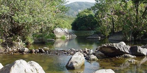 La ampliación del Parque de Los Alcornocales por parte de la Junta de Andalucía llevará la protección hasta el litoral uniendo en un corredor ecológico las zonas de La Almoraima, La Alcaidesa y Guadalquitón