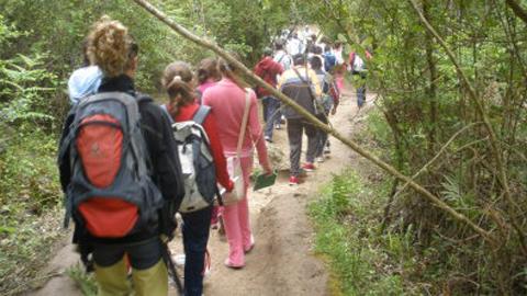 """El taller de empleo """"Vía verde"""" de El Viso del Alcor organiza la ruta histórica medioambiental """"La alunada"""" que acerca la huella de las civilizaciones de épocas prehistóricas que habitaron por la zona a las personas participantes"""