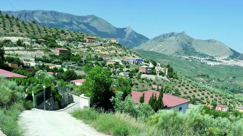 Personas afectadas por el mal estado de la vía pecuaria que va de la Cañada Real de Los Villares a La Guardia de Jaén solicitan actuaciones en el terreno para mejorar el tránsito de la misma solucionando los problemas de drenaje que presenta