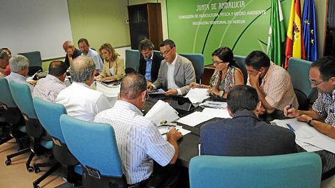 Mesa de Trabajo de la Fresa de Huelvaaboga por diversificar la producción y buscar el sabor para mejorar la rentabilidad