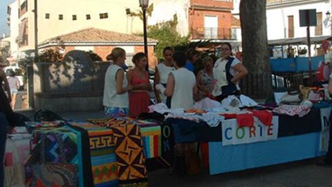 El Patronato Municipal de Cultura de Ogíjares prepara el nuevo curso 2014/2015 de los talleres culturales para los vecinos de 16 años o más