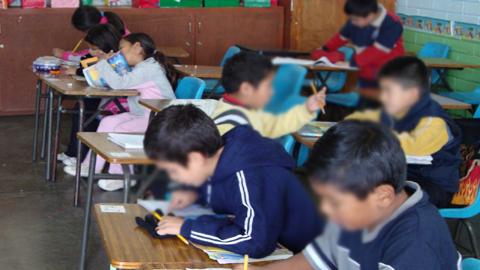Cantillana apuesta por la educación con dos medidas destinadas a la igualdad de oportunidades: el Programa de Gratuidad de los Libros de Texto y las ayudas al transporte para estudiantes que cursen sus estudios no obligatorios fuera del municipio