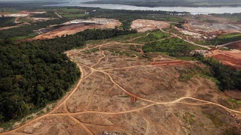 La deforestación en la selva amazónica de Brasil crece un 467 por ciento en el último año según los datos del Sistema de Alerta de Deforestación de IMAZON