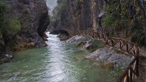 Se pone en marcha un proyecto de mejora y renovación de los caminos forestales del Parque Natural Sierras de Cazorla, Segura y Las Villas para aumentar la competitividad de sus explotaciones