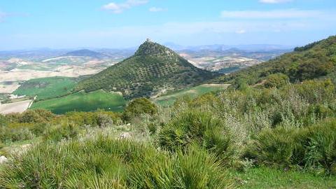 Restaurado el monte público San Pablo de Montellano, gracias al cual se han creado 45 puestos de trabajo, para garantizar la conservación de este espacio natural y el aprovechamiento sostenible de sus recursos