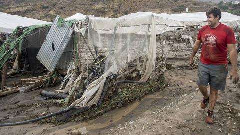 El sector agrícola del municipio granadino de Albuñol espera ayudas para la rehabilitación de las más de 200 parcelas afectadas por el temporal y la riada antes de comenzar la campaña de otoño-invierno