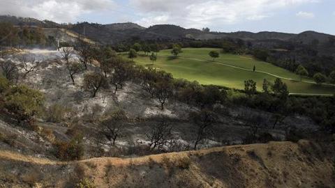 """Marbella ha propuesto a 167 urbanizaciones la elaboración de planes de autoprotección de incendios forestales y la limpieza de 168 parcelas en el Congreso Internacional """"FuegoRed"""" celebrado en Málaga"""