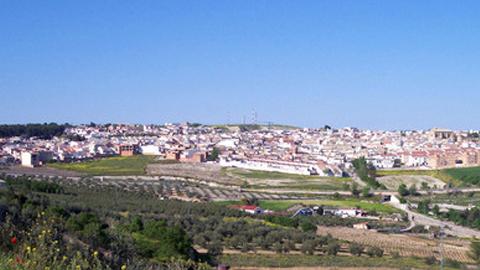 Torreperogil forma parte de los 11 núcleos de población del medio rural de la provincia de Jaén en los que el empleo ha crecido, pasando de 932 a 881 personas desempleadas en los últimos 4 años
