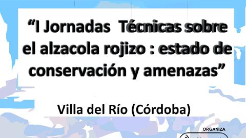 Villa del Río acoge las I Jornadas sobre el Alzacola Rojizo, organizadas por la Asociación Harmusch para presentar las amenazas que sufre este ave autóctona