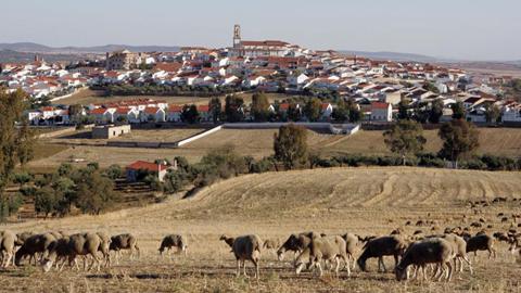 El proyecto internacional Ager Mellariensis investiga el término municipal de Fuente Obejuna con el objetivo de recuperar la antigua ciudad romana de Mellaria