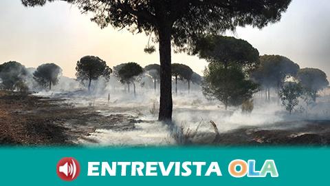 EQUO se presentará como acusación por el incendio de Doñana para que los responsables paguen por el daño ocasionado