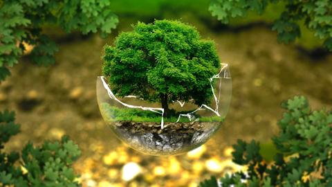 Los espacios degradados de seis municipios malagueños serán reforestados por personas voluntarias