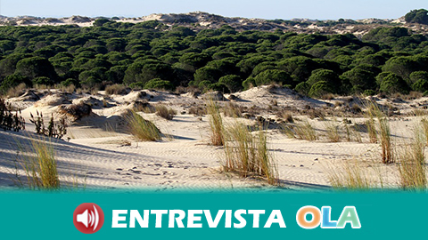 SEO/Bird Life pide que se mida el impacto que la romería de El Rocío tiene en el entorno natural de Doñana y que se retome la forma tradicional de celebración